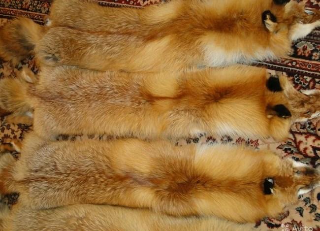 Меховые изделия из лисы в последнее время приобретают все большую популярность.